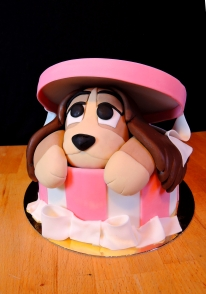 tort pies w pudełku