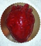 tort serce-dla przyszłej Pani weterynarz